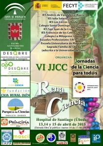 Cartel VI Jornadas